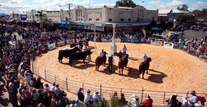 10 WEEKS TO GO UNTIL NCMC CASINO BEEF WEEK, Heartland magazine Casino NSW, NSW Northern Rivers News & Events