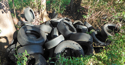 Lismore Council tyres of illegal dumping and appeals for help, Heartland magazine Lismore