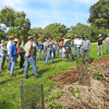 Rural Landholder Initiative grant round now open, Lismore City Council News, Heartland Magazine Lismore News and Events