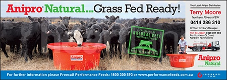 Performance Feeds, Anipro, Heartland Magazine NSW Northern Rivers News, Events and Advertising